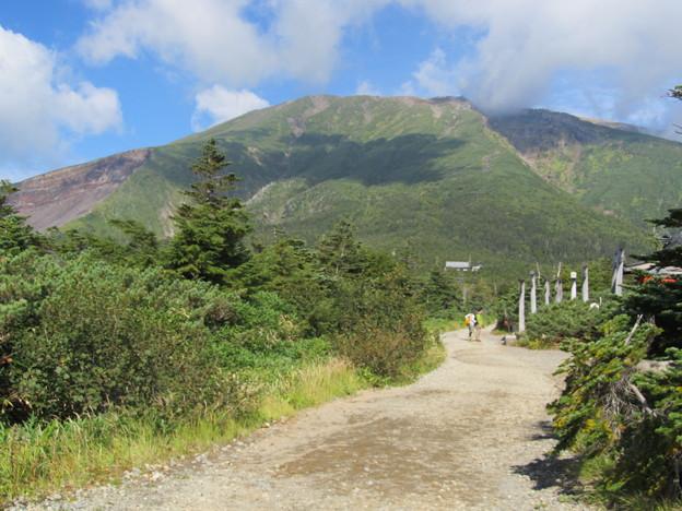 田ノ原から山を仰ぐ