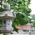 Photos: 2013-08-14 八雲神社