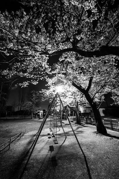 春夜ゆらら