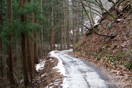 地獄谷に続く道
