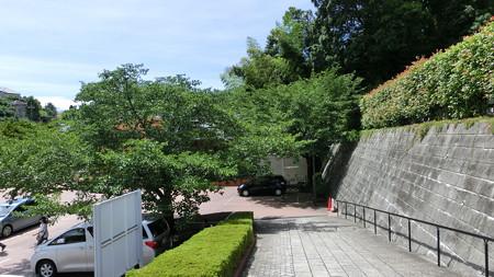 月命日の墓参り1