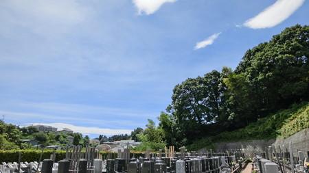 月命日の墓参り4