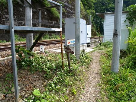 小和田駅40