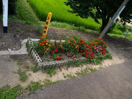 越中国分駅2