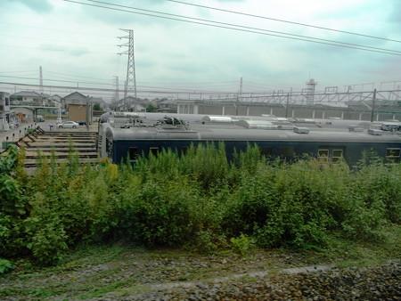 E231湘南新宿ライン車窓10