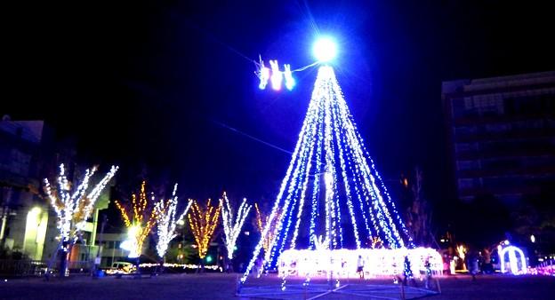 Photos: 諫早芝生公園