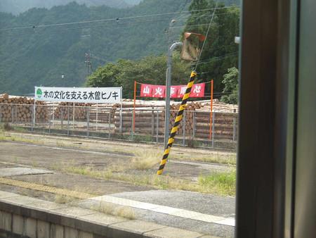 木曽ヒノキs