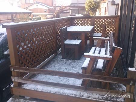 2013.02.13 雪