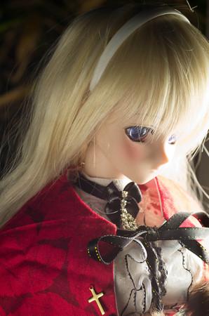 IMGP2012