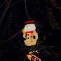 Photos: MERRY CHRISTMAS♪