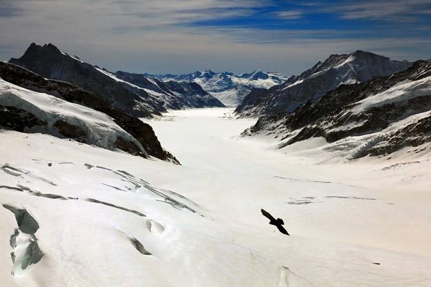 (スイス) アレッチ氷河、ヨーロッパ最長 ♪