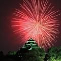 Photos: 日本の夏、岡山後楽園で。。