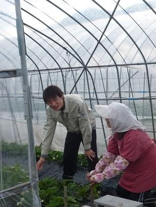 農家留学研修