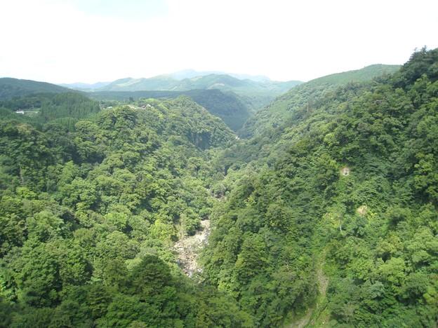 九重 夢大吊橋02 一帯が鳴子川渓谷