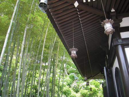 長谷寺11 経蔵と竹林