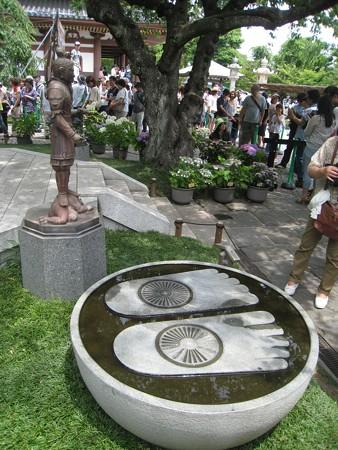 長谷寺13 大きな仏石足