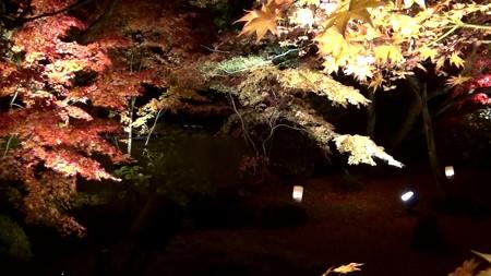 円通院1:石庭1