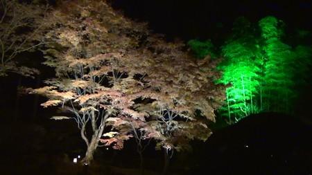 円通院17:遠州の庭