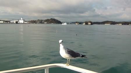 松島湾 海猫G-1