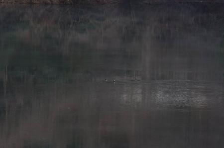 20121209-IMGP0009