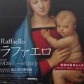 ラファエロ展の看板