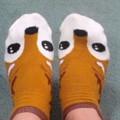 写真: そして奈良のくつしかを履く
