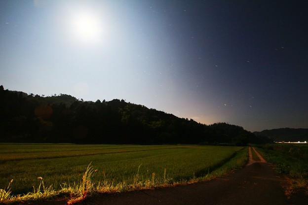 月の灯り by kuwana