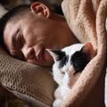 写真: 猫ゆたんぽ