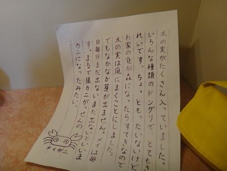 メイガニ手紙