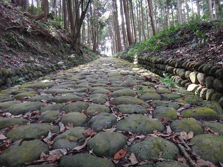 東海道石畳坂 (5)