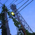 鉄塔と街灯@上尾