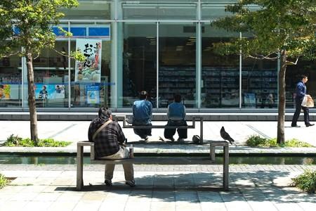2013.04.27 グランモール公園 鳩のいるベンチ