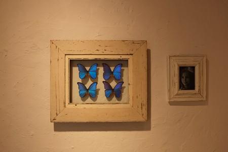 2013.08.19 MARK IS みなとみらい 壁 蝶と少女