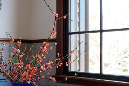 2014.01.29 山手 外交官の家 窓辺の生花
