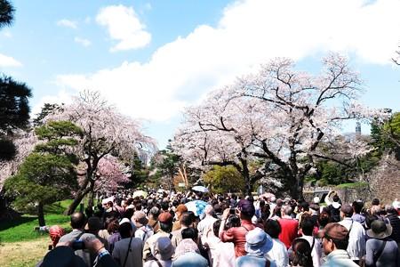 2014.04.04 皇居 乾通り