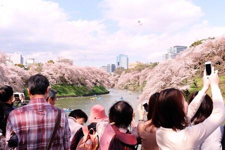 2014.04.04 千鳥ケ淵 ボート乗り場