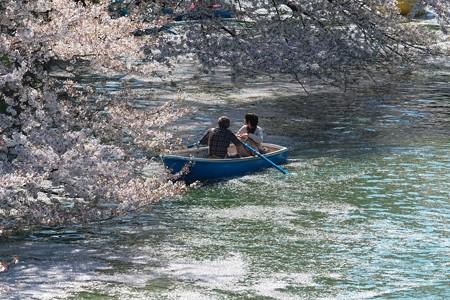 2014.04.04 皇居 千鳥ケ淵 満開