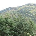 20120929 硫黄岳 15:09