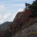 20121011 石鎚山 岩の間から
