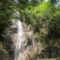 新緑と馬頭滝