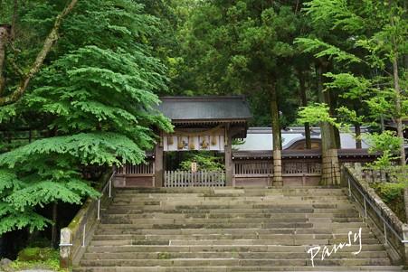 塀重門への石段・・諏訪大社 2