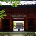 写真: 木染月の妙本寺・・6