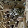 写真: 木染月の妙本寺・・8