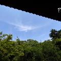 写真: 木染月の妙本寺・・9