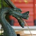 写真: 木染月の妙本寺・・10