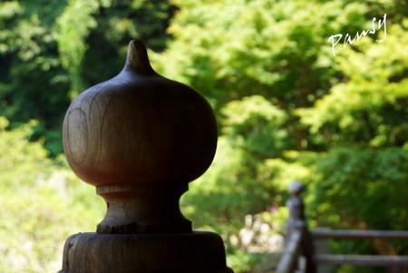擬宝珠・・木染月の妙本寺・・11