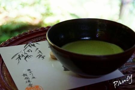 竹の緑に重なる緑・・竹林・・12