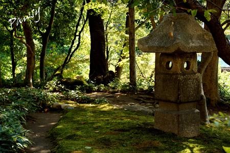 神無月の円覚寺 22
