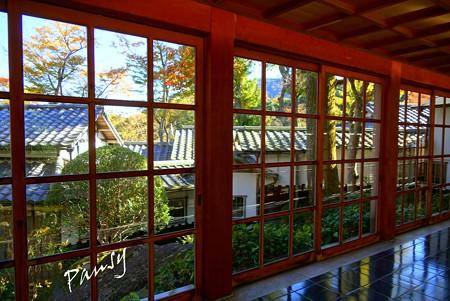 箱根の紅葉 334