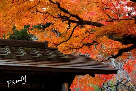 北鎌倉 163